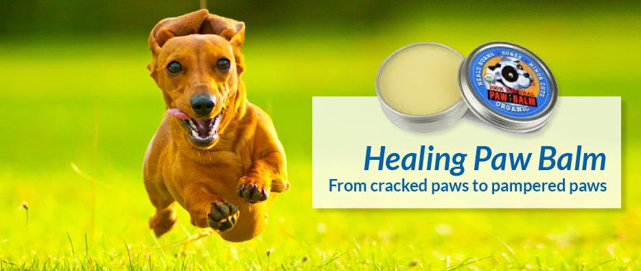 Organic Healing Paw Balm