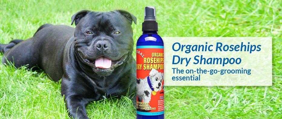 Organic Rosehips Dry Shampoo